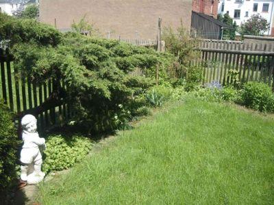 8 Garten