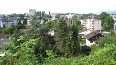 St. Margrethen Grundstücke, St. Margrethen Grundstück kaufen