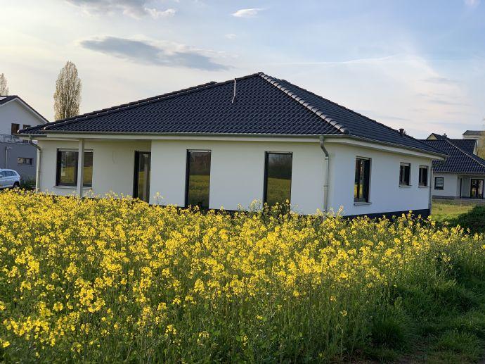 4 Zimmer Wohnung in Bad Dürrenberg