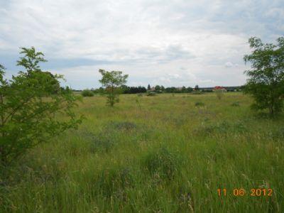 Wohnen in ländlicher Umgebung in Teltow-Fläming