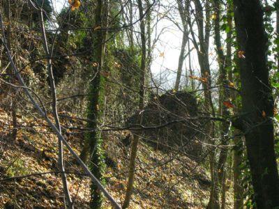 Romantischer Waldhang mit Resten der Burganlage