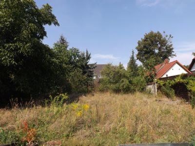 Branitzer Baugrundstück in Parknähe