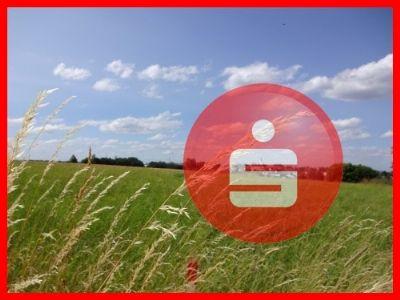 Dürrlauingen Bauernhöfe, Landwirtschaft, Dürrlauingen Forstwirtschaft