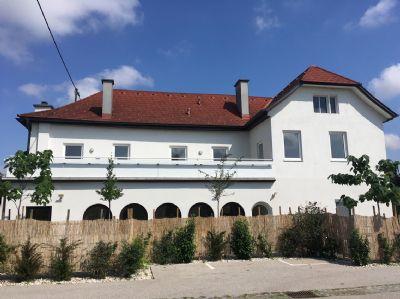 Schwanenstadt Wohnungen, Schwanenstadt Wohnung mieten