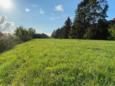 idyllisches Grundstück auf der Elbhalbinsel Krautsand