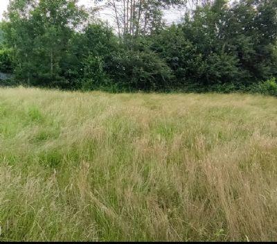 Schopfheim Grundstücke, Schopfheim Grundstück kaufen