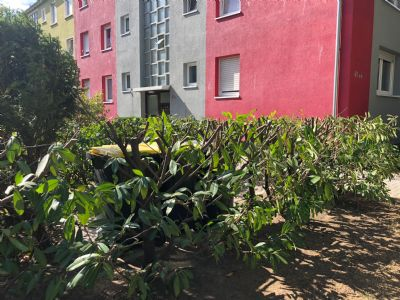 Frankenthal Wohnungen, Frankenthal Wohnung mieten