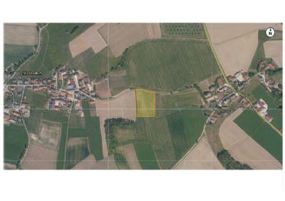 Aresing Bauernhöfe, Landwirtschaft, Aresing Forstwirtschaft