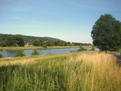 Nur wenige Schritte zur Elbe
