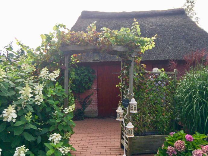 FALK-LIVING Romantisches Reetdachhaus Nähe Nord-Ostsee-Kanal ...
