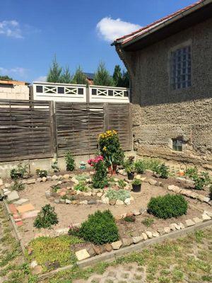 Kreative Gartengestaltungen