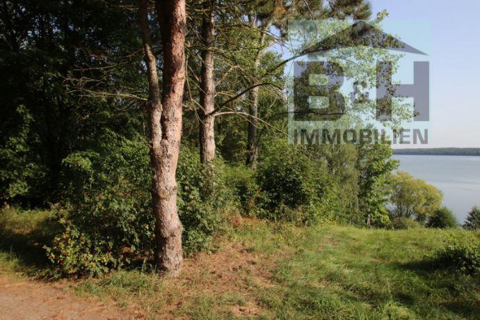 Garten am Muldestausee komplett möbliert zu verkaufen - Wochenendgrundstück mit Pachtvertrag
