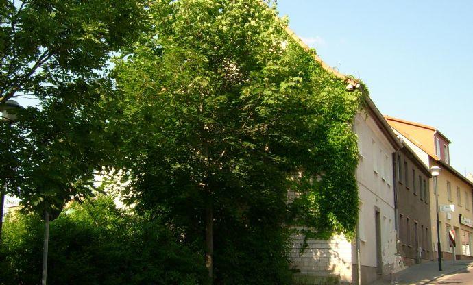 Badergasse 2 - Einfamilienhaus mit großer Terrasse im Stadtzentrum