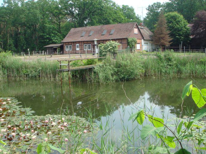 Saniertes Landhaus mit Nebengebäuden, Naturteichanlage, auf ca.2,4 ha Grundstücksfläche, ideal zur Pferdehaltung, am Stadtrand von Celle zu verkaufen.