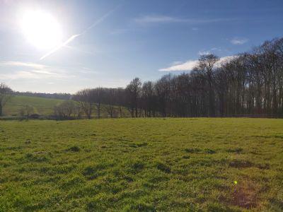 Soest Grundstücke, Soest Grundstück kaufen