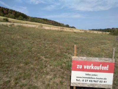Molzhain Grundstücke, Molzhain Grundstück kaufen