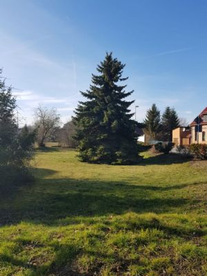 Lutherstadt Eisleben Grundstücke, Lutherstadt Eisleben Grundstück kaufen