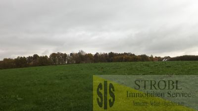 Marzling Grundstücke, Marzling Grundstück kaufen