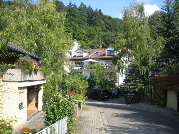 3-Zi.-Studiowohnung mit Dachterrasse in Ziegelhausen
