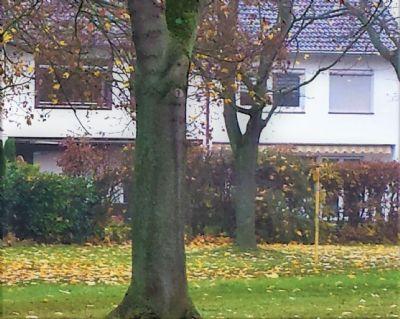 Bad Kreuznach Häuser, Bad Kreuznach Haus kaufen