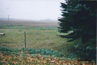 Bauland neben Grundstück