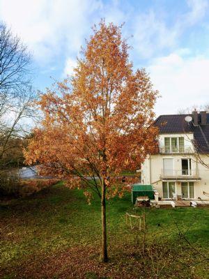 Dortmund Häuser, Dortmund Haus kaufen