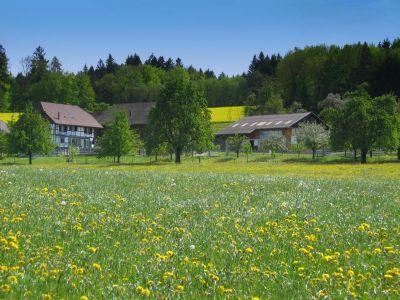 Pferdehof Grünegg - Ferienwohnung auf Bauernhof