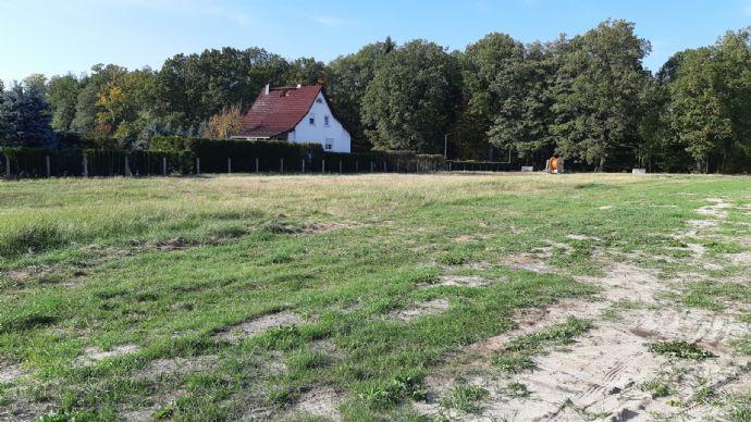 Hausbau mit Heinz von Heiden Massivhaus in ruhiger Lage