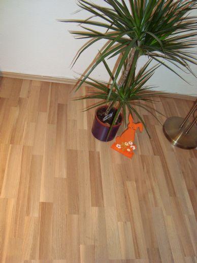 TOP - Neu Renovierte 2 Zimmer Wohnung in Bad Emstal