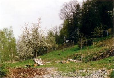 Wohnen am Waldrand