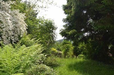 Wiese (unterste Gartenebene)