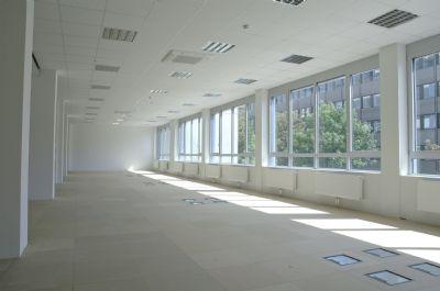Lichtdurchflutetes Großraumbüro