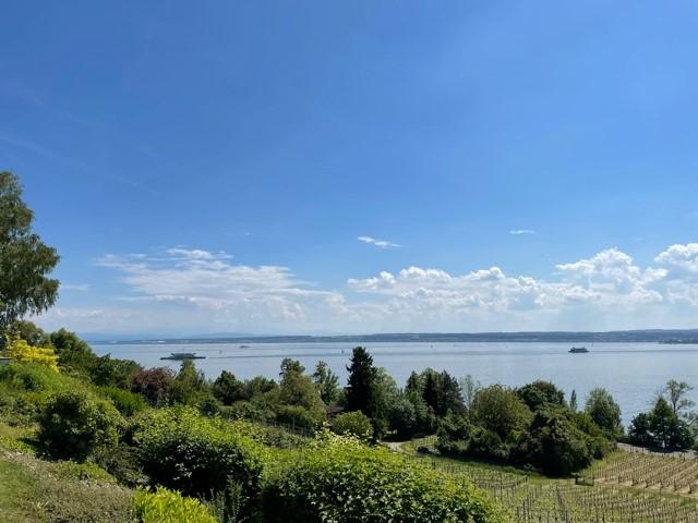 Überwältigende Mainau- und Bergsicht - ein unvergleichliches Seepanorama