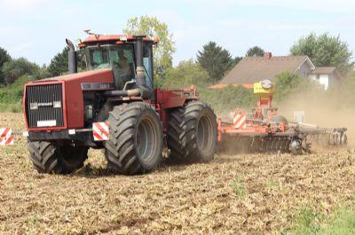 Timisoara Bauernhöfe, Landwirtschaft, Timisoara Forstwirtschaft