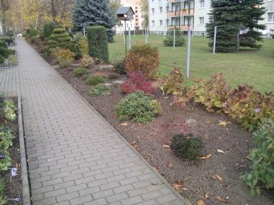 Außenanlagen mit Fußweg vom Hauseingang