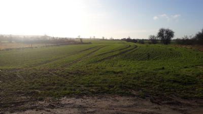 Marlow Grundstücke, Marlow Grundstück kaufen