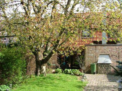 Garten zum Wohnhaus