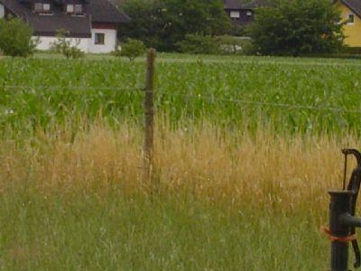 Vorn:1.Brunnen auf B,2.Zaun,3.Feld+Häuse