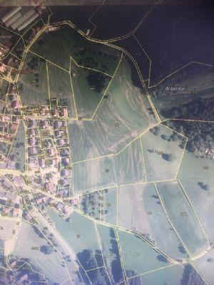Überlingen Bauernhöfe, Landwirtschaft, Überlingen Forstwirtschaft