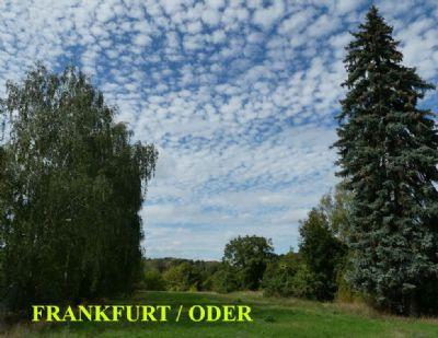 Frankfurt (Oder) Grundstücke, Frankfurt (Oder) Grundstück kaufen