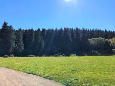 Ruhig und idyllisch am Waldrand - kleines Neubaugebiet