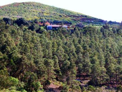 Moya, Gran Canaria Häuser, Moya, Gran Canaria Haus kaufen