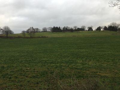 Hattingen Bauernhöfe, Landwirtschaft, Hattingen Forstwirtschaft