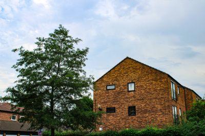 Groß Schwiesow Wohnungen, Groß Schwiesow Wohnung kaufen