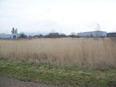 Zörbig Industrieflächen, Lagerflächen, Produktionshalle, Serviceflächen