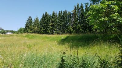 Baugrundstück in Waldrandlage und Golfplatznähe!