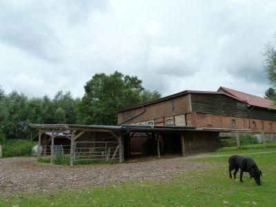Unterstände für die Pferde