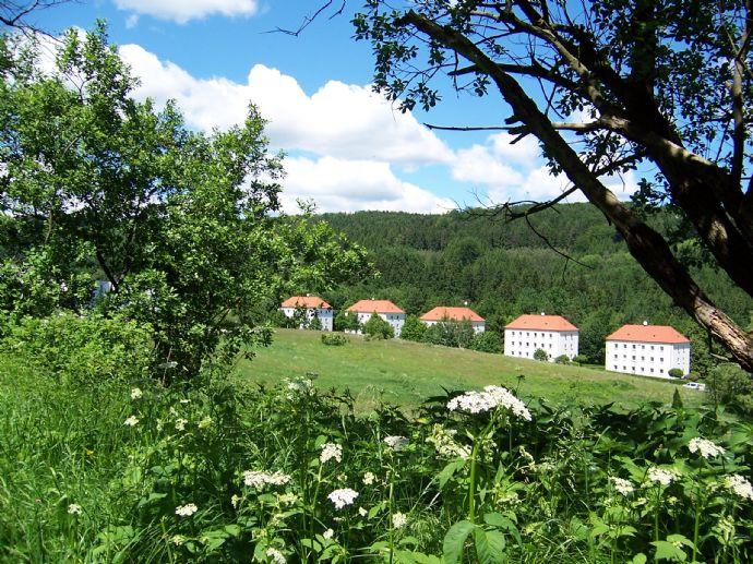 Schöne 3-Zimmer-Wohnung in der Kunst- und Seidenblumenstadt Sebnitz