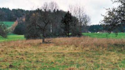 Julbach Grundstücke, Julbach Grundstück kaufen