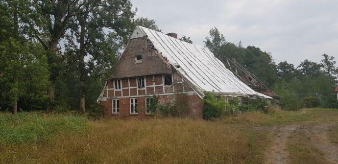 Rarität in Hechthausen - Landhaus mit großem Grundstück, Nebengebäuden und Entwicklungspotential zu verkaufen